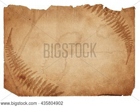 Old Vintage Rough Paper With Scratches And Stains Texture Isolated