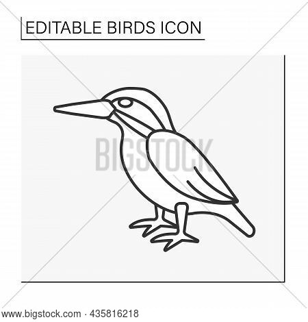 Kingfisher Line Icon. Small And Medium-sized, Brightly Colored Bird. Tropical Bird With Large Head A