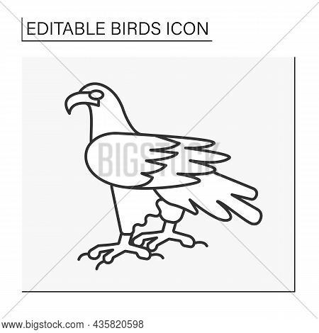 Eagle Line Icon. Bird Of Prey With Large, Hiked Beak, Powerful Talons, And Strong Legs.birds Concept