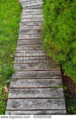 A Path Made Of Wooden Planks In A Garden Or Park.