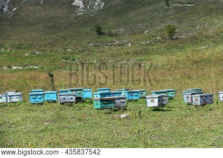 Wooden Beehives. Caucasus Mountains, Chechen Republic. Russia.