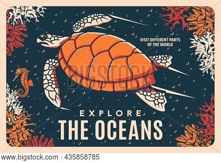 Sea Turtle Retro Vector Poster, Oceanarium Or Ocean Coral Reef And Undersea Life. Sea World Or Under