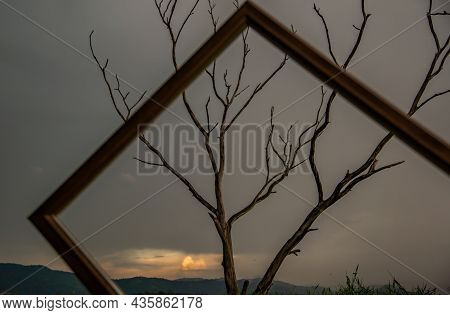 Portrait Of Landscape Of Sunset Sky With Dry Tree Looking Through At Empty Photo Frame At Bang Pra R