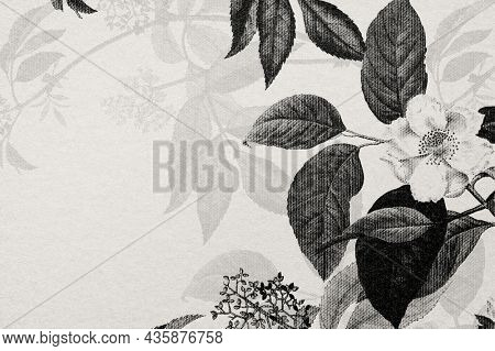 Rose wallpaper engraved hand drawn flower in bw