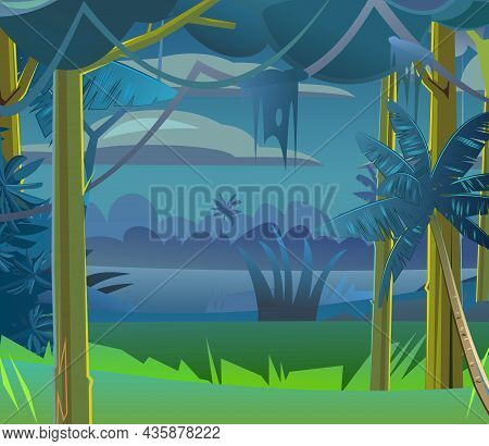 Rainforest Trees. Dense Night Thickets. View From Dark Jungle Forest. Tropical Forest Panorama. Sout