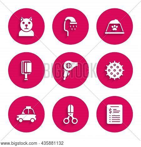 Set Hair Dryer, Scissors Hairdresser, Grooming Salon Price List, Tennis Ball, Pet Car Taxi, Brush Fo