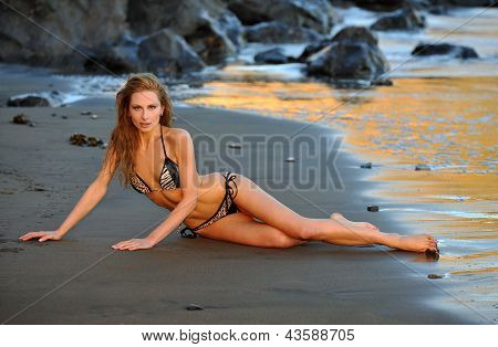 Sexy model posing at golden sunset at passific coast of California