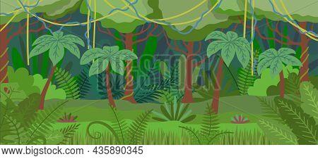 Cartoon Color Tropical Jungle Forest Landscape Scene Concept Flat Design Style. Vector Illustration