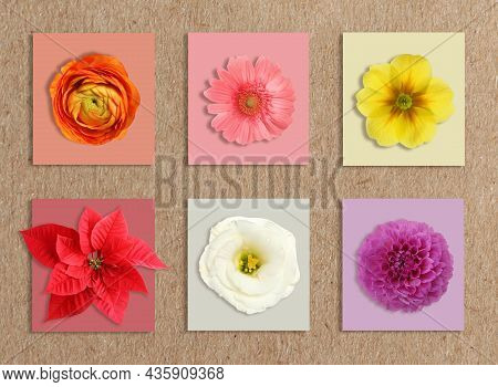 Multicolor Flowers And Cards Of Similar Shades On Kraft Paper, Collage. Montessori Method