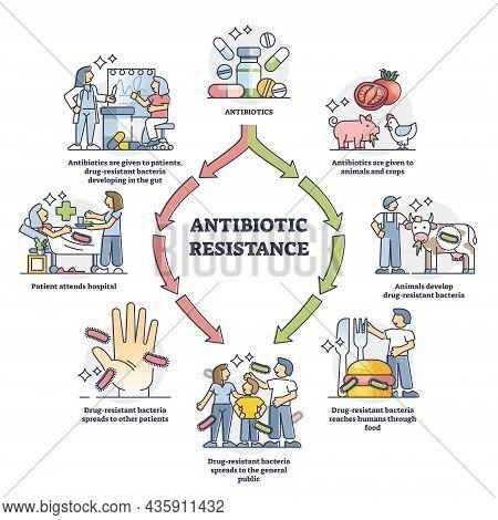 Antibiotic Resistance Process Cycle, Illustrated Outline Diagram. Drug Resistant Bacteria Developmen