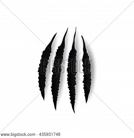 Bear Claw Marks, Scratches, Wild Animal Talon Rips, Vector Holes Of Predator Nails. Tiger Or Cat Paw