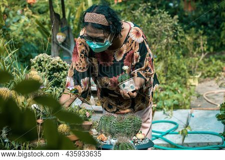 Woman Holding A Small Cactus In Hands Gently On Nature Background. Woman Holding  Cactuses In Pot In