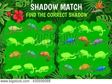 Kids Shadow Match Riddle Game Cartoon Chameleons In Jungles. Find Correct Lizard Silhouette Vector E