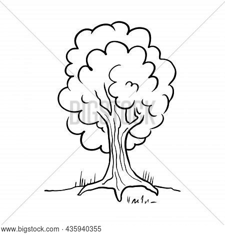 A Lush Tree With A Wide Trunk. Vector Sketch Doodle Drawn By Hand