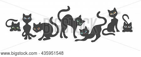 Curious Cat Poses. Funny Happy Playing Curiously Angry Jumping Catching Scared Kitten, Young Cats Be