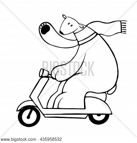 Cute Polar Bear Driving Scooter, Vector Clipart, Funny Animal Illustration Good For Card And Print D