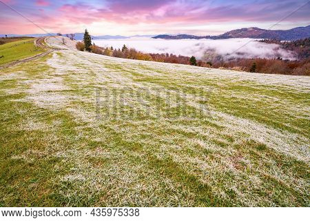 A Glade In Frost After A Frosty Night In The Mountains Covered With Forests