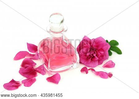 Rose perfume in retro art deco glass bottle with flower and pink petals.    Natural scented concept. Rosa rugosa variety. On white background.