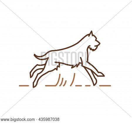 Schnauzer Dog Silhouette, Outline Hand Drawn Contour Vector Illustration For Veterinary Logo, Petsho