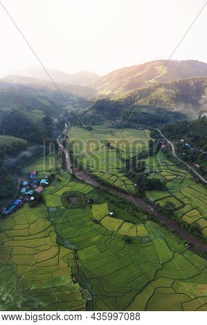 Aerial View Of Agriculture In Paddy Rice Fields For Cultivatio, Agricultural Land With Green In Coun