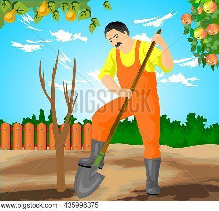 Man Digging In Garden Vector Illustration. Man Digging In Garden Vector Illustration.