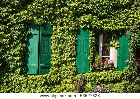 France, Ivy Covered House Wall With Green Wood Shutters