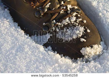 Trecking Shoe Set Into Fresh Snow