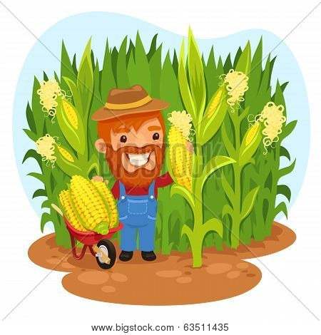 Harvesting Farmer In A Cornfield