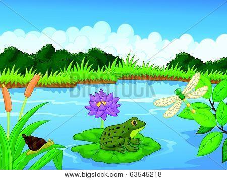 Cartoon frog at the river
