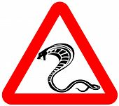 attention snakes sign animal alert symbol vector poster