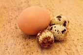 Chicken and quail eggs on wooden board poster