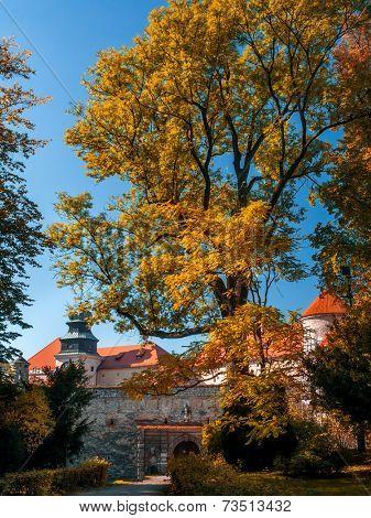 Castle in Pieskowa Skala, National Ojcow Park, Poland