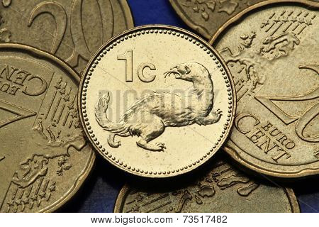 Coins of Malta. Weasel (Mustela nivalis) depicted in the old Maltese one cent coin.