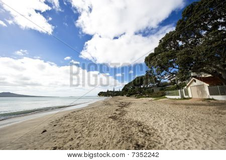 Takapuna Beach, New Zealand