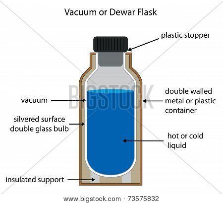 Dewar Or Vacuum Flask Labelled Diagram.