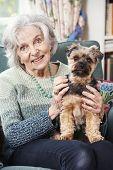 Portrait Of Senior Woman Holding Pet Dog Indoors poster