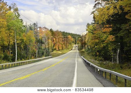 Autumn colored highway