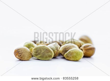 Hemp seeds in a white background
