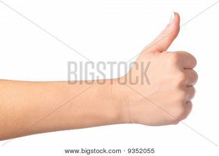 Gesturing Hand Ok Isolated