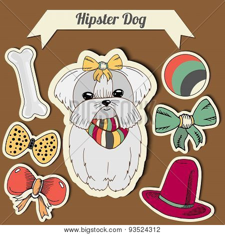 Vector Hipster Maltese Dog With A Dog With A Set Of Toys: Ball, Bows, Bone , Hat. Hand Drawn Colorfu