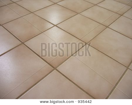 clear picture of a shiny brown tile floor poster