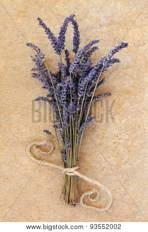 Lavender herb flower bunch over speckled handmade paper background. Lavandula angustifolia.