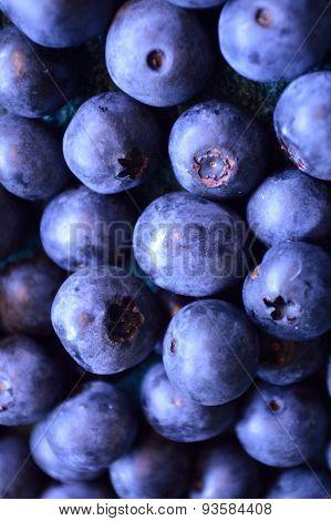 Organic Blueberries, Vertical Image