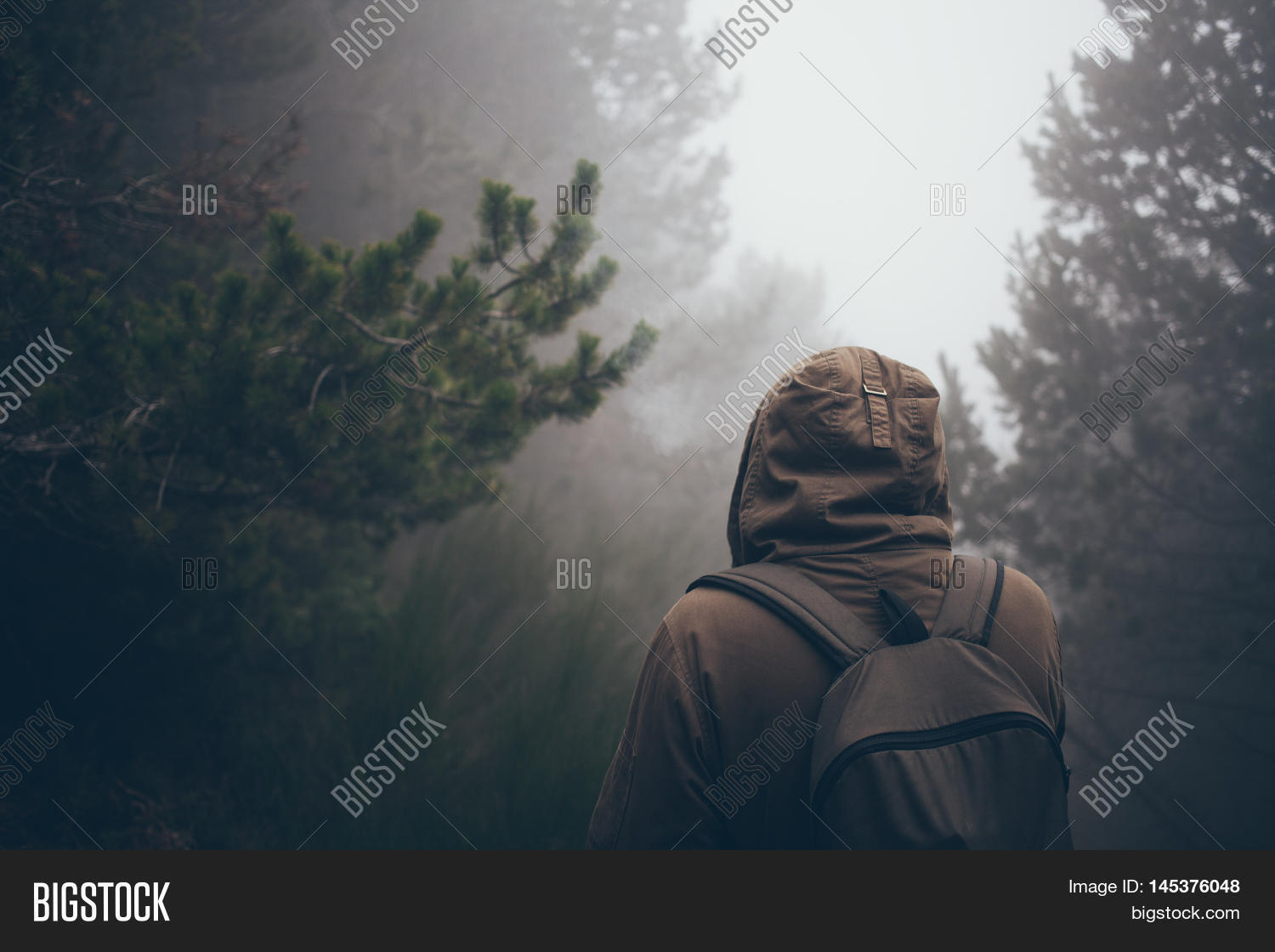 Man Walking Foggy Image Photo Free Trial Bigstock