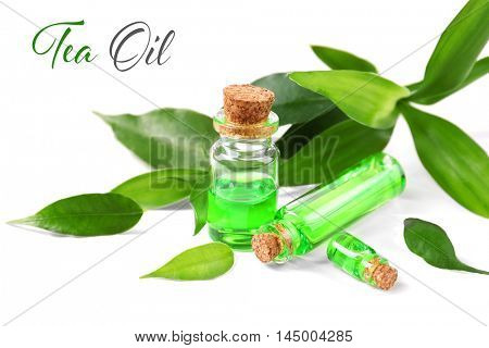 Bottles with tea tree essence and green leaves on white background. Space for text.