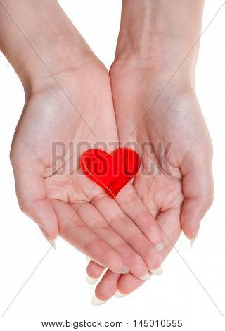 One Red Heart On Female Palms Isolated