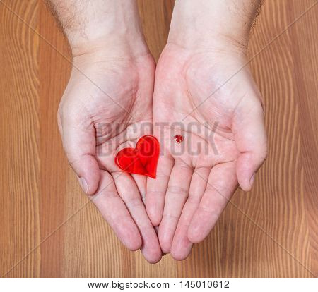 Little And Big Hearts In Male Hands
