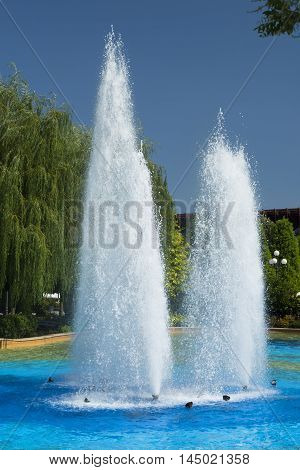 Beautiful fountain park in the summer in a sunny day