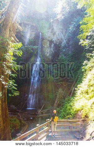 Waterfall in Olympic NP,USA