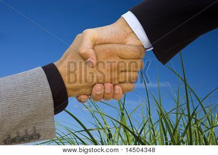 Green business team work! Handshake to seal the agreement poster